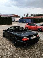 E46 323ci Convertible - 3er BMW - E46 - img_8717sklt0.jpg