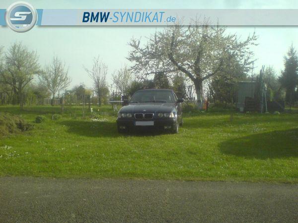 E36 Cabrio - 3er BMW - E36 - f0.JPG