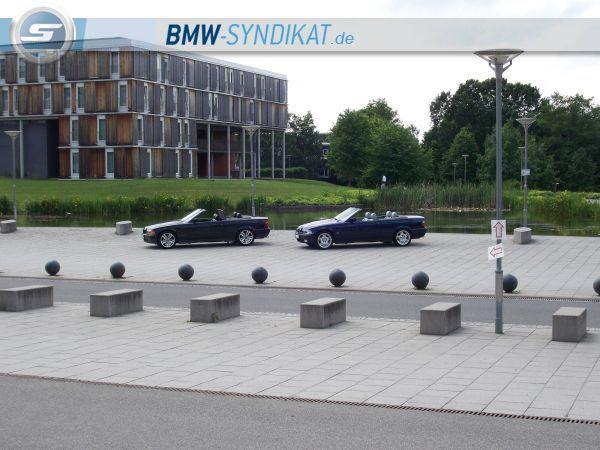 E36 Cabrio - 3er BMW - E36 - g.JPG