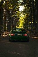 Pandem´d 330ci goes BRG - 3er BMW - E46 - Benson brg-03549-02bear.jpg