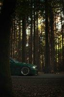 Pandem´d 330ci goes BRG - 3er BMW - E46 - Benson brg-03582-01bear.jpg