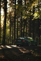 Pandem´d 330ci goes BRG - 3er BMW - E46 - Benson brg-03599-01bear.jpg