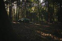 Pandem´d 330ci goes BRG - 3er BMW - E46 - Benson brg-03658-01.jpg