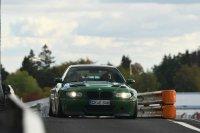 Pandem´d 330ci goes BRG - 3er BMW - E46 - racetracker_11097683_164532bear.jpg