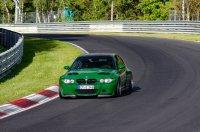 Pandem´d 330ci goes BRG - 3er BMW - E46 - racetracker_11098236_164533bear.jpg