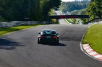 Pandem´d 330ci goes BRG - 3er BMW - E46 - racetracker_11098237_164814bear.jpg