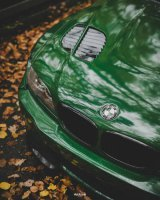 Pandem´d 330ci goes BRG - 3er BMW - E46 - DSC02492.jpg