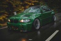 Pandem´d 330ci goes BRG - 3er BMW - E46 - DSC02675bear.jpg