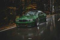 Pandem´d 330ci goes BRG - 3er BMW - E46 - DSC02853bear.jpg