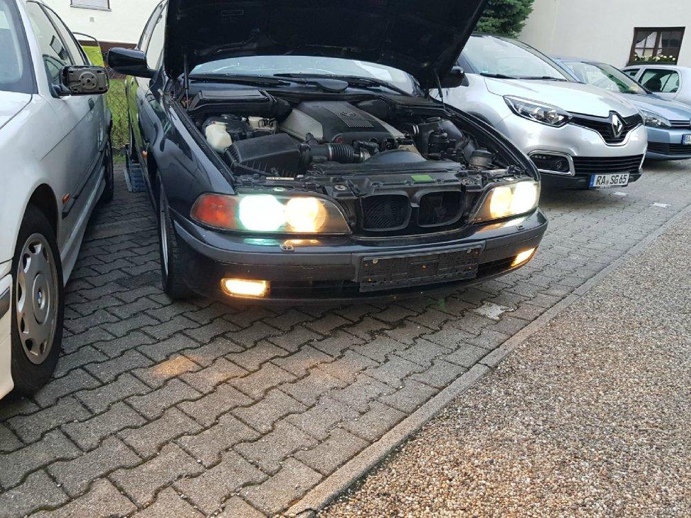 e36 m62b44 Alpinweiss III - 3er BMW - E36