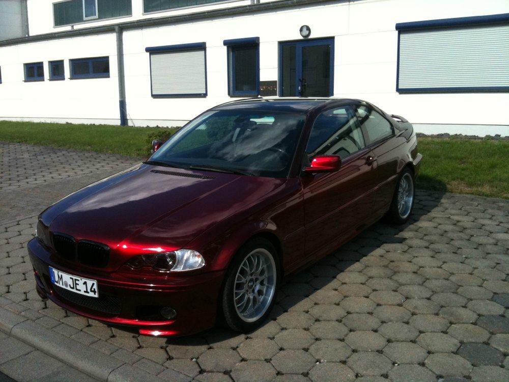 Coupe Candy Red To Black Das Schaaf Im Wolfspelz 3er