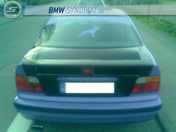 e36 umbau - 3er BMW - E36 - Bild020.jpg