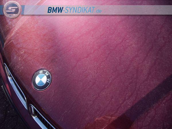 Jimmy' Calypso - 3er BMW - E36 - IMG_0023.JPG