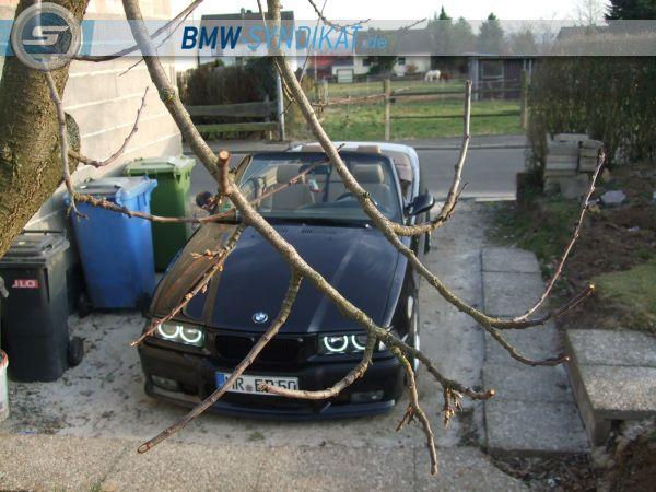 E36 320i Cabrio - 3er BMW - E36 - DSCF2190.JPG