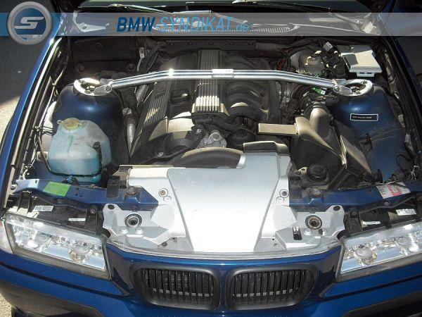 BerlinsMostWanted E36, 323i Sport Edition - 3er BMW - E36