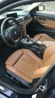 BMW Sitze Sportsitze Leder Dakota Sattelbraun