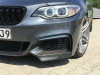 M240i Cabrio Performance 313 Carbon uvm. - 2er BMW - F22 / F23 - IMG_2869.JPG