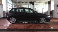 Seat Ibiza GT TDi - Fremdfabrikate - IMG_7220.JPG