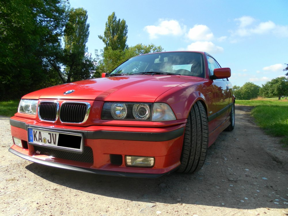 Ein kleiner ganz Groß BMW 316i - 3er BMW - E36