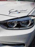 Olaf ....frozen :-) - 3er BMW - F30 / F31 / F34 / F80 - 20180526_095624.jpg