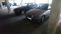Von ganz klein zu ganz Groß - 3er BMW - E36 - DSC_1450.JPG