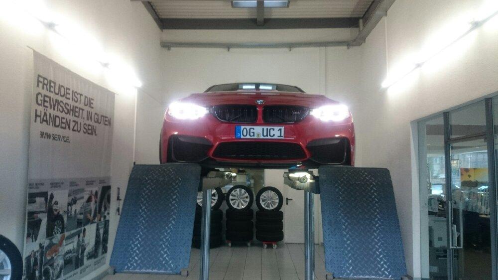 BMW /// M4 Sakhir Orange - 4er BMW - F32 / F33 / F36 / F82
