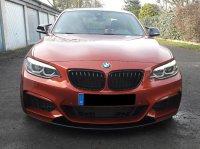 The Sunset Orange Beast - 2er BMW - F22 / F23 - 20180130_135515.jpg