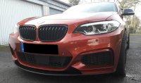 The Sunset Orange Beast - 2er BMW - F22 / F23 - 20180130_135540.jpg