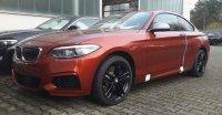 The Sunset Orange Beast - 2er BMW - F22 / F23 - IMG-20180209-WA0004.jpg