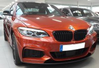 The Sunset Orange Beast - 2er BMW - F22 / F23 - 20171124_153019.jpg