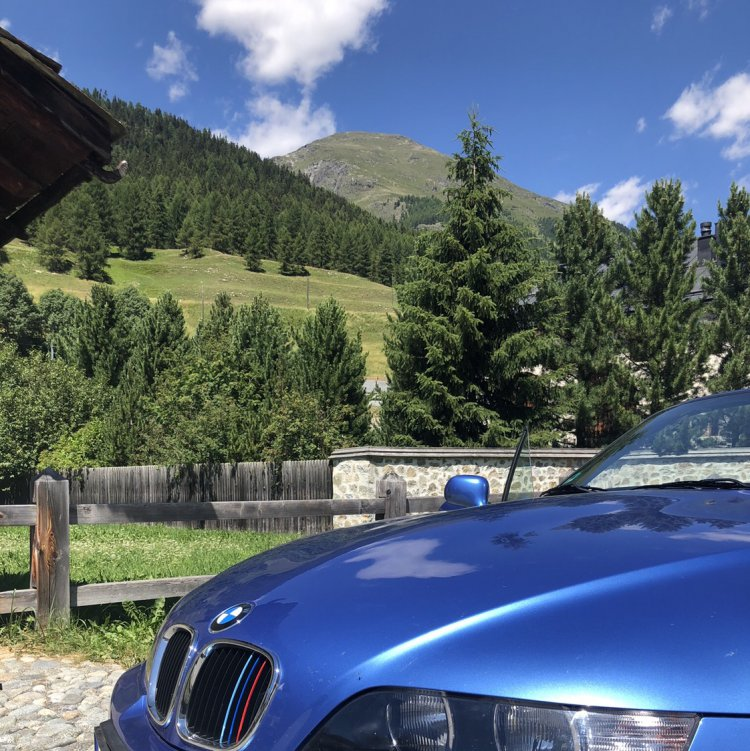 Leidenschaft kennt kein Verfallsdatum. - BMW Z1, Z3, Z4, Z8