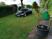 Oxfordgrüner 328 - 3er BMW - E36 - IMG_20200605_213103.jpg
