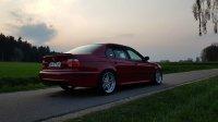 NÖ EY 39 - Komplettumbau 520i auf 530i - 5er BMW - E39 - 57109815_2093086670747138_5635119782387777536_o.jpg