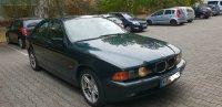 BMW e39 530i - 5er BMW - E39 - 2.jpg