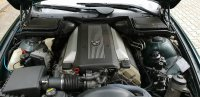 BMW e39 530i - 5er BMW - E39 - 10.jpg