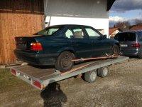 Ein Traum in Techno Violett Metallic - 3er BMW - E36 - IMG_7461.JPG