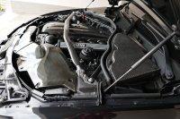 E90 330i  290 PS M(3) Fahrwerk - 3er BMW - E90 / E91 / E92 / E93 - Motorraum Carbon(5).JPG