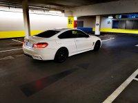 F32 420i - 4er BMW - F32 / F33 / F36 / F82 - IMG_20201025_132327.jpg