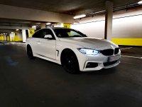 F32 420i - 4er BMW - F32 / F33 / F36 / F82 - IMG_20201025_132405.jpg