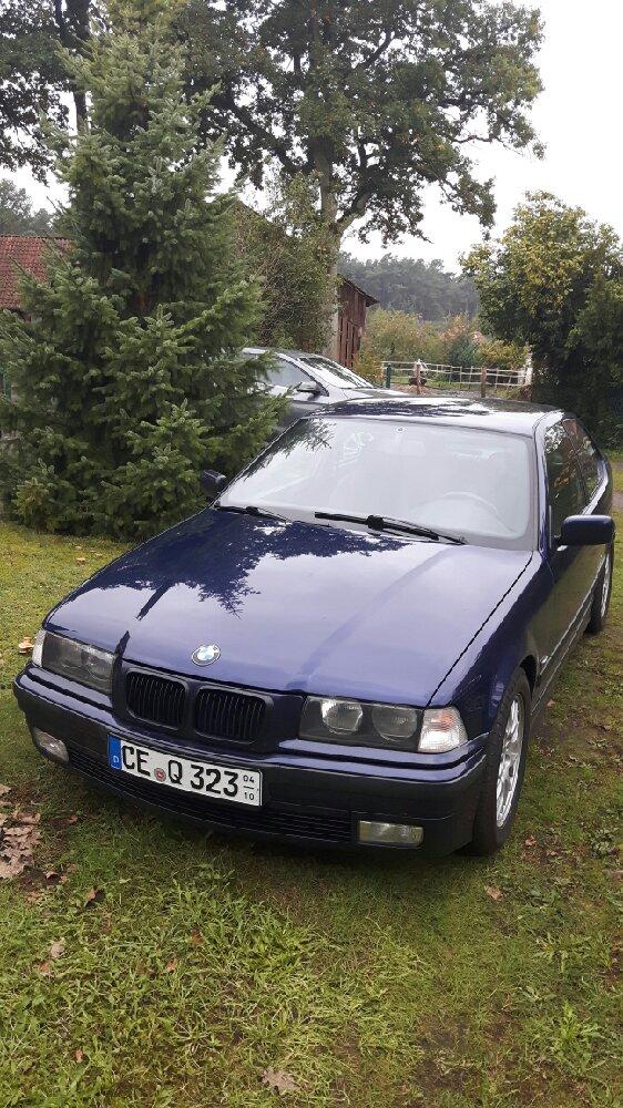my 323 ti - 3er BMW - E36