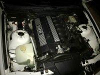 323ti Compact Alpin Weiss von Schweiz - 3er BMW - E36 - IMG_2296.jpg