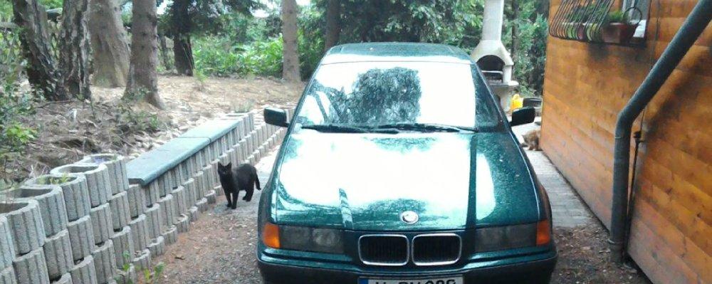 E36- Mein grünes Monster - 3er BMW - E36