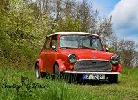 """""""Sir Harry the Mini"""", Mini Oldtimer - Fotostories weiterer BMW Modelle - harry3.jpg"""