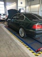 E46, 320i Limousine - 3er BMW - E46 - IMG_6409.JPG