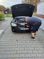 Black F11 530D - 5er BMW - F10 / F11 / F07 - Nieren.jpg