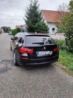 Black F11 530D - 5er BMW - F10 / F11 / F07 - Heck.jpg