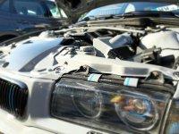 323ti Individual - 3er BMW - E36 - 20191013_154411.jpg