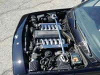 BMW E30 Cabrio V12 350i - 3er BMW - E30 - IMG_20190330_141021.jpg