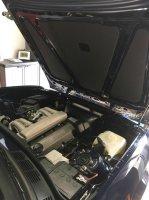 Kleiner im neuen Dress - 3er BMW - E30 - 40903404_1627655927359978_8943199431667220480_n.jpg