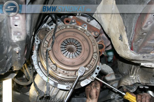 E36 316i Hellrot [Verkauft:-(] - 3er BMW - E36 - IMG_3054.JPG
